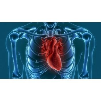 Καρδιολόγος Συνεργαζόμενοι Ιατροί Νευροψυχιατρική Κλινική - panagiagrigorousa.gr